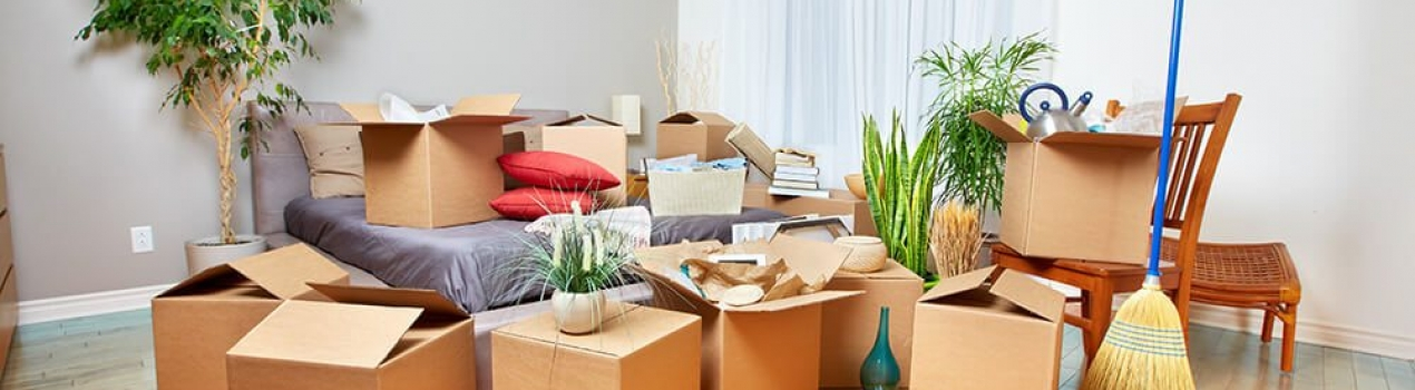 USE SELF STORAGE IN NORTHERN BEACHES TO DECLUTTER YOUR HOME