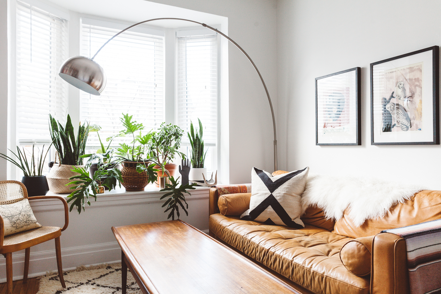 living room with plants on window seat
